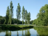 Jean-Jacques Rousseau Park