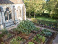 Royaumont Gardens